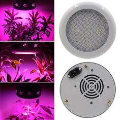 UFO 130W LED Grow Light Full Spectrum Plant Lamp Horticulture Grow Hydroponics Lighting Wholesale #Affiliate