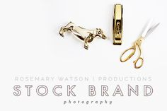 Since I like you so much and you asked so sweetly, I have wrapped up just the prettiest collection of your favorite White & Gold Styled Stock Brand Photographs including: The Goldie Photoshop Brushes, Photoshop Actions, Gold Desk, Photography Branding, Gold Style, White Gold, Design Inspiration, Stock Photos, Creative