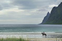 Ersfjordbotn. Utsikt mot fjellrekka Okshornan, Ersfjorden på Senja.    Foto: Roger Ellingsen
