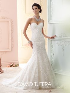 Strapless hand-beaded embroidered lace and sequin tulle over memory taffeta fit and flare dress, scalloped sweetheart neckline, back covered buttons down to hem, chapel length train, detachable spaghetti and halter straps included. Sizes: 0 – 20, 18W – 26W