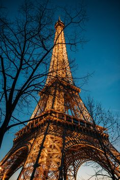 GARY PEPPER Paris Eiffel Tower at Night by Luke Shadbolt