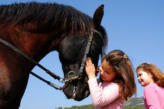 Vyrazte na Ranč Všemina projet se na koních nebo poníkovi. Nachází se jen 10 minut chůze od hotelu.