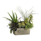 """Found it at Wayfair - 18"""" Succulents Plant Arrangement with Terra Cotta Pot"""
