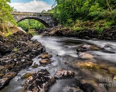Bridge Poster featuring the photograph Fairy Glen Bridge by Adrian Evans