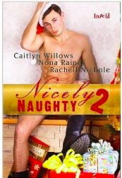 I Can't Help Where My Mind Goes: In My Opinion Monday - Nicely Naughty - Just a lit...
