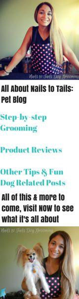 Nails to Tails Pet Blog! Visit NOW! Just the beginning of a fun new pet/petgrooming blog :) #petgroming #doggrooming #petblog #dogs #nailstotailsdoggrooming #papillon #blog