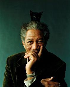 Morgan Freeman with a cat on his head. Morgan Freeman being bromantic. Morgan Freeman looking sad. Morgan Freeman looking SHO. Celebrities With Cats, Celebs, I Love Cinema, Kino Film, Morgan Freeman, Cat People, Famous Faces, Famous Men, Crazy Cat Lady