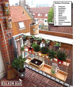 Farming on your own balcony with the BALKONBAR and Hanging Garden.