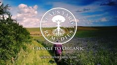 into the world of organic