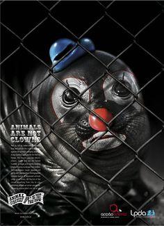 its not a clown ..