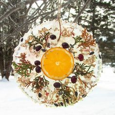 Frozen Wreath with juniper, berries and orange