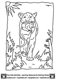 Handsome jackal coloring pages Download Free Handsome jackal