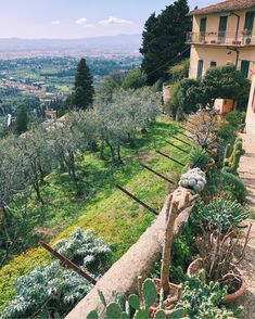 View over Florence from Fiesole, Tuscany, Italy! Tuscany Italy, Florence, Flora, Sidewalk, Acute Accent, Toscana Italy, Tuscany, Plants, Walkways