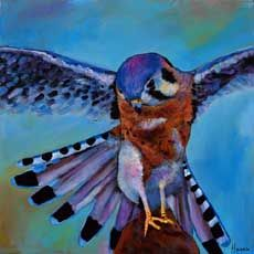 Kestrel. American Kestrel acrylic painting on canvas. Wildlife painting by Johnathan Harris.