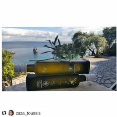 Parga is a beautiful town in north/west Greece. Virgilliant Extra Virgin Olive oil traveled to Parga! North West, Olive Oil, Greece, Travel, Beautiful, Food, Greece Country, Trips, Traveling