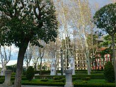 Madrid. Pza del palacio Real