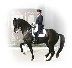 Kyra kyrklund, brilliant rider and trainer :)