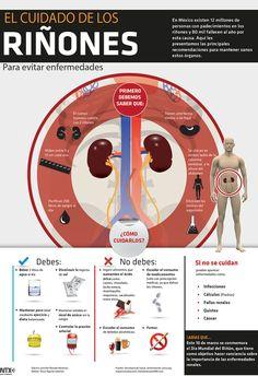 ¿Sabes cuáles son las funciones que desempeñan tus riñones y cómo cuidar de ellos? #Infographic