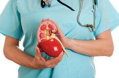 Факторы риска развития мочекаменной болезни. Приступы заболевания. Профилактика мочекаменной болезни.