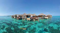 10 Best Paradise Luxury Resorts in Maldives: Water Villas, snorkelling