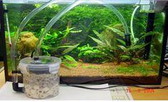 DIY Aquarium Filter - PetDIYs.com