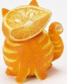 Cat made of Oranges...what a neat idea for a centerpiece for breakfast!