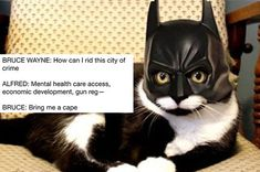 """""""pls sign my petition to rename 'lego batman' to 'batman' and 'batman' to 'meat batman'"""""""