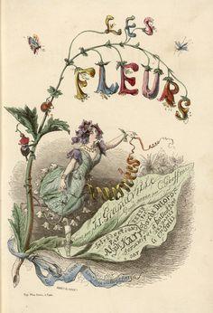 Les Fleurs animées par J.J. Granville. http://www.grandville.nancy.fr/fleurs.php
