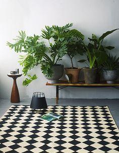 Afbeeldingsresultaat voor Planten en interieur