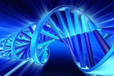 Biotechnology Market: Top Ten Suppliers of Synthetic Biology Technology