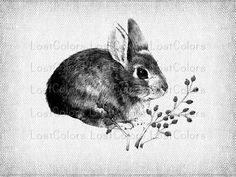 INSTANT DOWNLOAD  Digital Download Little Rabbit by LostColors, $1.30