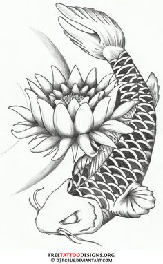 Free how to draw koi carp coloring pages