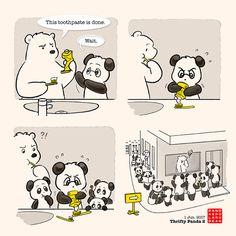 Thrifty Panda 2 – Panda and Polar Bear Panda Hug, Panda Love, Cute Panda, Panda Bears, Happy Birthday Drawings, Sister Quotes Funny, Funny Animals, Cute Animals, Doodle Books