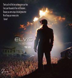 Elvis Presley Quotes, Elvis Quotes, Elvis And Priscilla, Priscilla Presley, If I Can Dream, Freddy Rodriguez, Elvis Memorabilia, American Legend, Rockn Roll