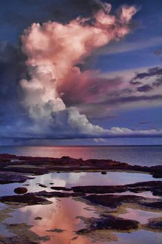✮ Early Morning Sky-East Point Reserve, Top-End, Australia