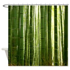 BAMBOO GROVE 2 Shower Curtain on CafePress.com