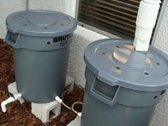 Dual rain barrels...maybe I could paint these so they dont stick out so much on the side of the house....
