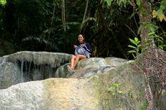 - the jungle soloist -