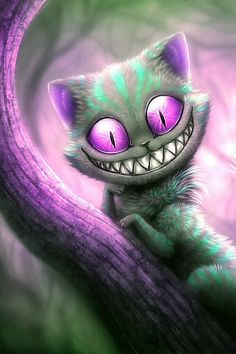 Cheshire Cat... - Green coat with purple eyes.... doesn't he look sooo innocent?