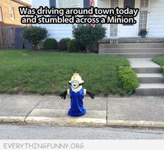 funny minion pictures, dumpaday - Dump A Day Funny Cute, The Funny, Funny Minion Pictures, Funny Pics, Minions Love, Minion Stuff, Dump A Day, Funny Captions, Just For Laughs