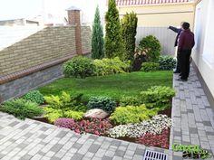 Super Ideas for landscaping backyard trees spaces Small Yard Landscaping, Landscaping Trees, Lawn And Landscape, Landscape Design, Small Gardens, Outdoor Gardens, Evergreen Garden, Backyard Trees, Small Garden Design