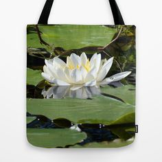 Water Lily http://society6.com/