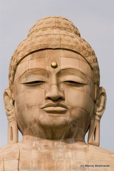 Buddha in meditation pose statue build of sandstone and red granite was consecrated in 1989 by His Holiness XIV Dalai
