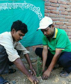 5 अप्रैल 2016 को 280 वे दिन लगातार पौध रोपण के क्रम में जे.पी.पुरम् कॉलोनी पटेल नगर  अनगढ़  मिर्ज़ापुर में अनुराग जी के प्लाट में पेडेलेन्थस (equaled leaf)के पौध का रोपण मनोज कुमार,धुरकर के साथ अनिल कुमार सिंह,संस्थापक/सचिव-खेल क्रान्ति अभियान/पर्यावरण शुद्धिकरण अभियान,प्रवक्ता-शान्ति निकेतन इण्टर कॉलेज पचोखरा,मिर्ज़ापुर द्वारा किया गया।