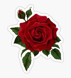 Pegatina rose