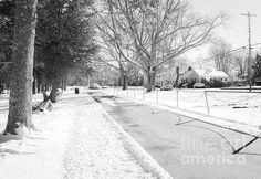 Let It Snow by Andrea Anderegg #snow #winter #christmas #holidays #decor #greetingcards #xmas #park #cozy #home