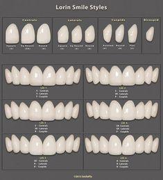 Smilepix: Software for photoshop templates for smile simulations - Dental photo - Dental Art, Dental Teeth, Dental Implants, Veneers Teeth, Dental Veneers, Dental Photos, Dental Aesthetics, Dental Anatomy, Beautiful Teeth