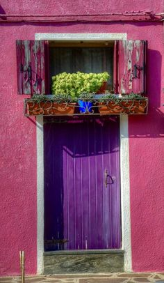 """Door in Italy...but could be anywhere.  Don't you just want to go for it sometimes?  Now that I'm getting """"older""""...why not?  Who cares what others think...does this make you smile?  Do it."""