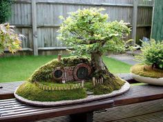 bonsai with hobbit house