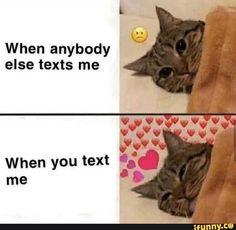 memes for crush & memes for crush _ memes for crush funny _ memes for crush cute _ memes for crush hilarious _ memes for crush quotes for him _ memes for crush faces Memes Humor, Bf Memes, Funny Boyfriend Memes, Jokes, Freaky Memes, Stupid Funny Memes, Funny Drunk, Drunk Texts, 9gag Funny